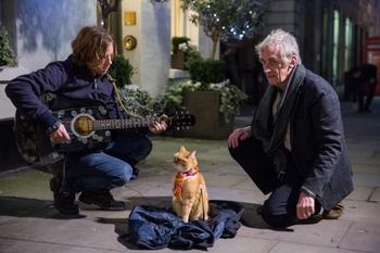 Luke Treadaway (James), Bob, Roger Spottiswoode. A Street Cat Named Bob. Covent Garden. Photo by Andreas Lambis.jpg